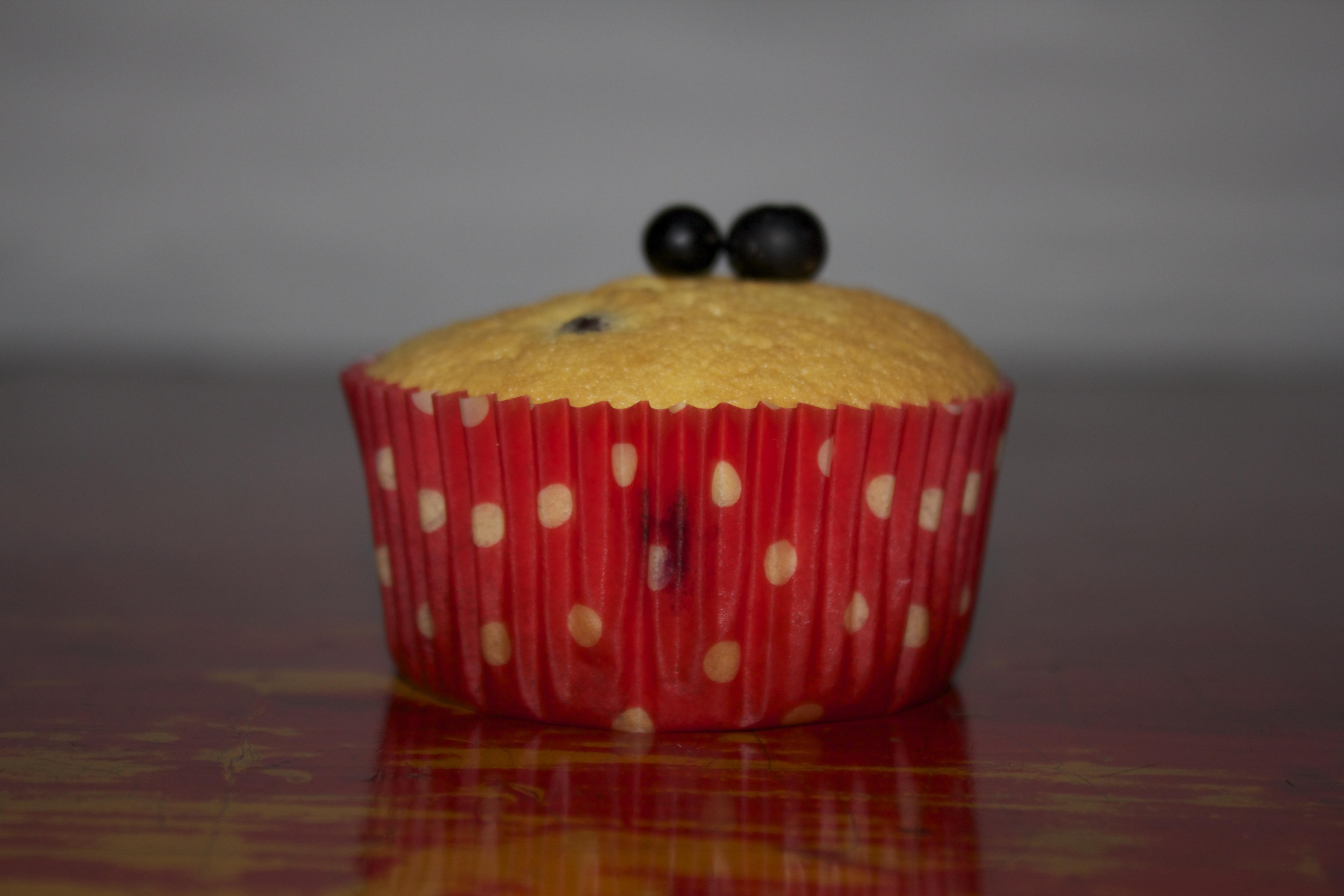 Muffins de Agraz